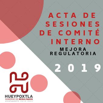 ACTAS DE SESIONES COMITÉ INTERNO