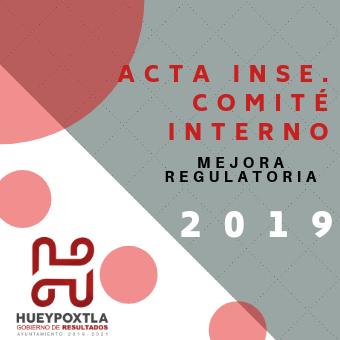 ACTAS INS. COMITES INTERNOS