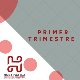 1er Trimestre conac 2019